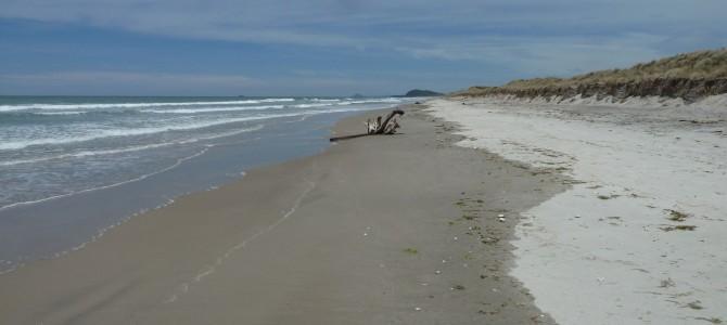 Heiße Quellen, Strand und Karangahake-Schlucht