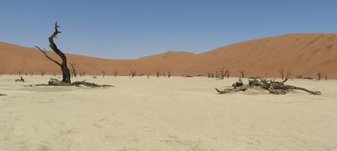 Die Schönheit der Namib-Wüste
