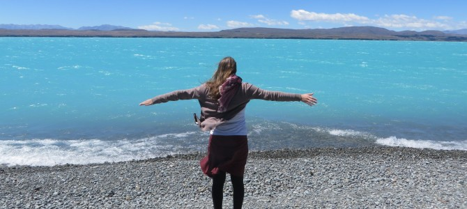 Wildlife, Mount Cook und Akaroa